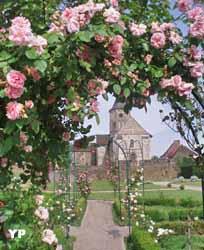 roseraie des jardins du château de Jumilhac